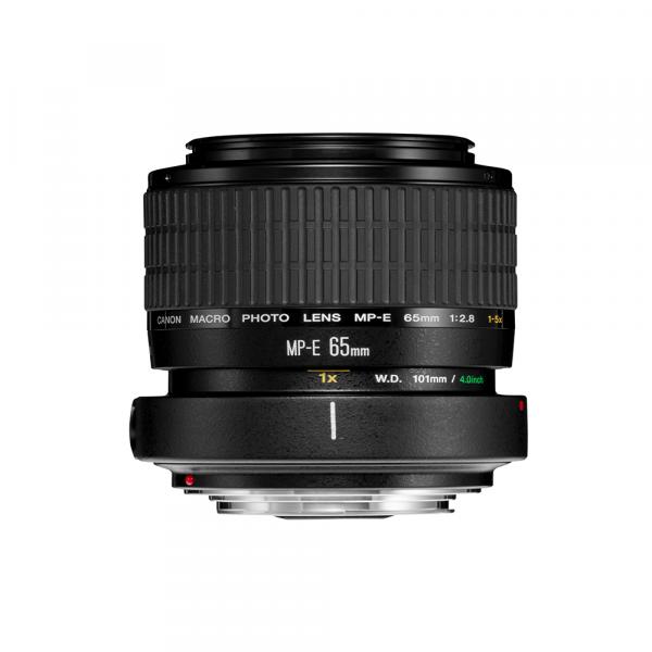 Canon MP-E 65/2.8 Macro( 1:5 )-3 Jahre CH Garantie