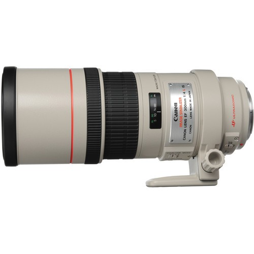 Canon EF 300/4.0L IS USM-CH Gar.